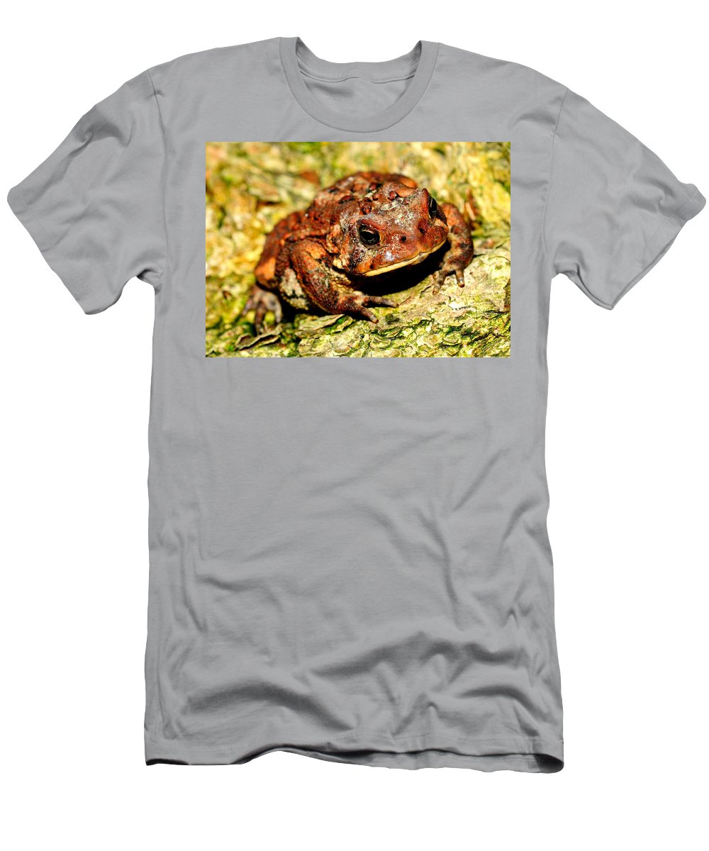 Toad Men's T-Shirt (Athletic Fit) featuring the photograph Toad by Joe Ng