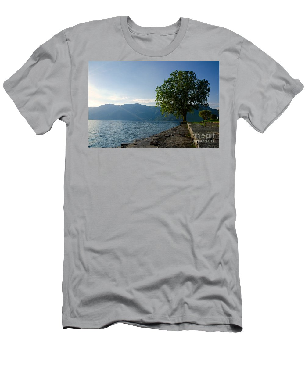 Tree Men's T-Shirt (Athletic Fit) featuring the photograph Tree On The Lake Front by Mats Silvan