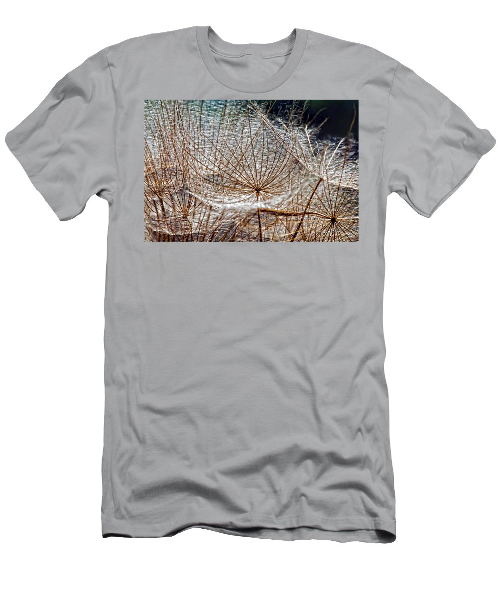 Asteraceae Men's T-Shirt (Athletic Fit) featuring the photograph Weed Wandering by Steve Harrington