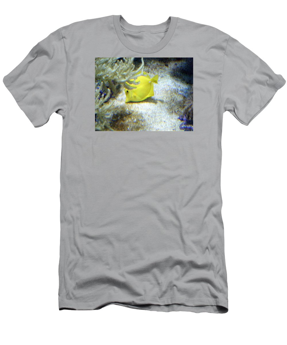 Angelfish Men's T-Shirt (Athletic Fit) featuring the photograph Yellow Angelfish by April Patterson