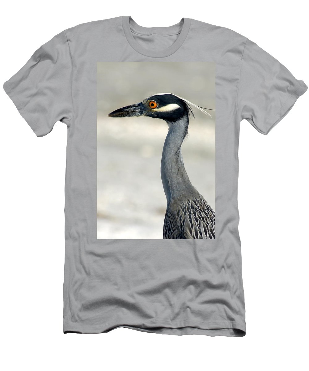 Yellow-crowned Night Heron Men's T-Shirt (Athletic Fit) featuring the photograph Yellow-crowned Night Heron by Larry Allan