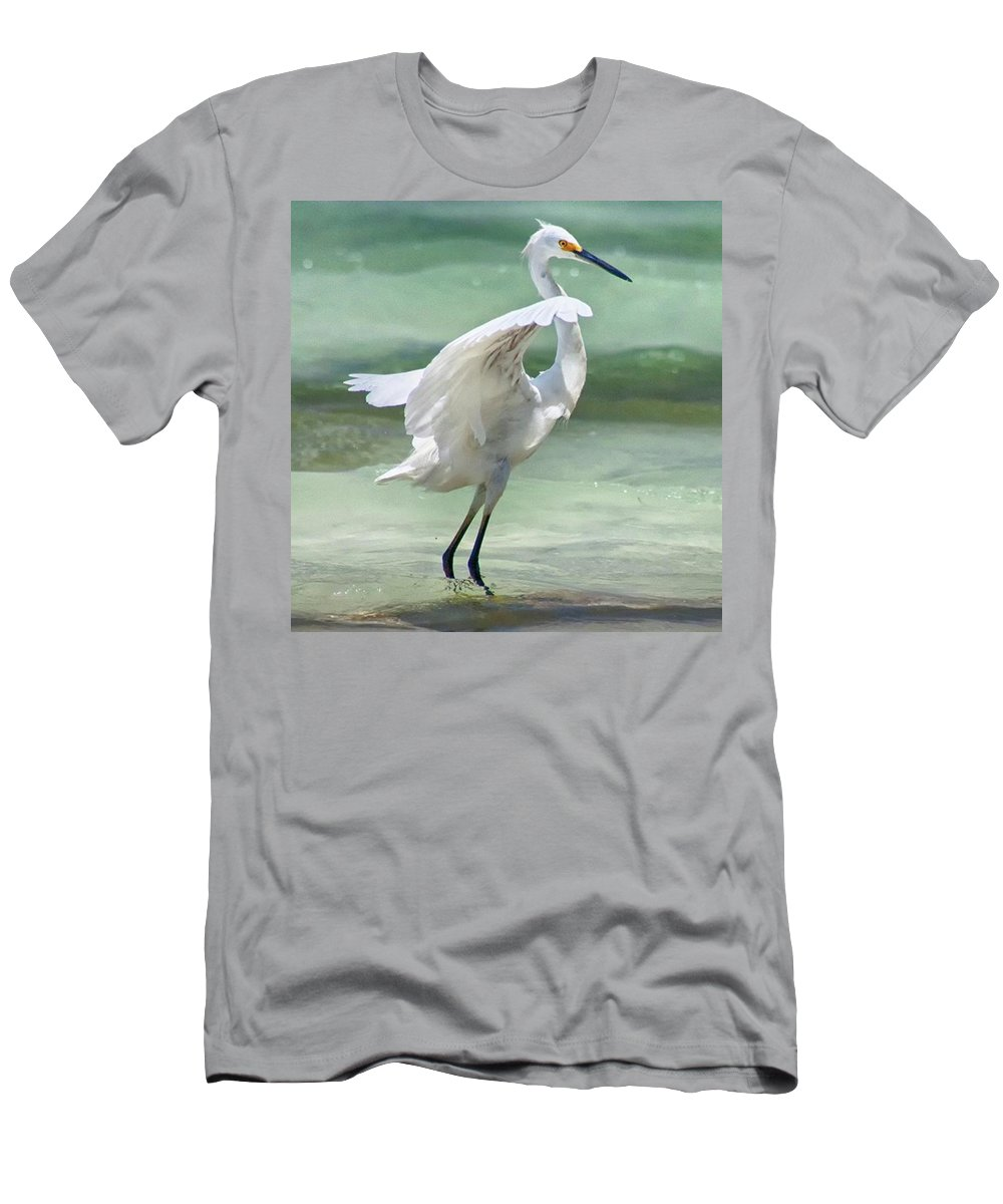 Egret T-Shirt featuring the photograph A Snowy Egret (egretta Thula) At Mahoe by John Edwards