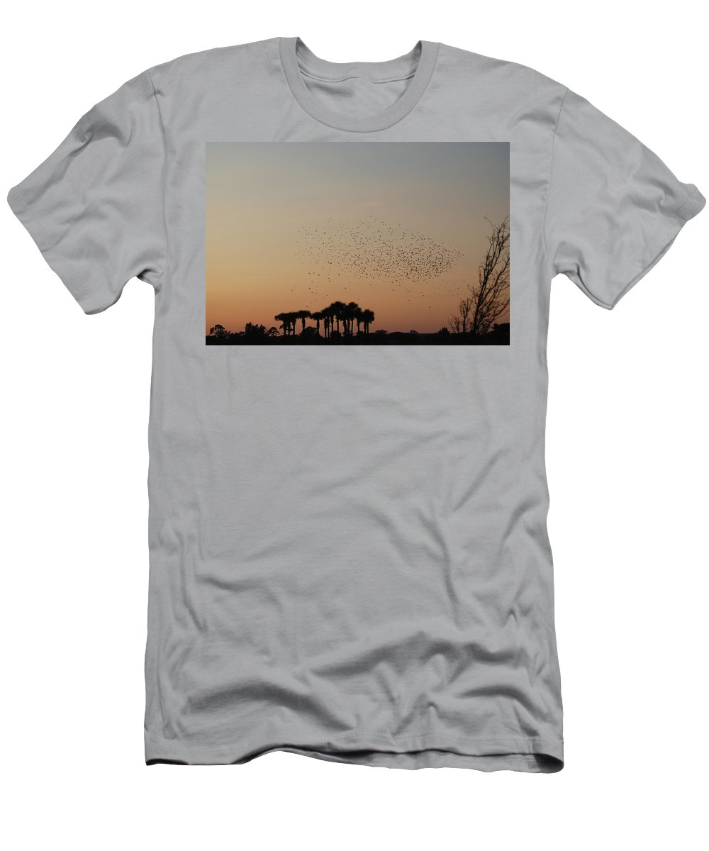 Nature Men's T-Shirt (Athletic Fit) featuring the photograph Birds In The Sun by Rob Hans