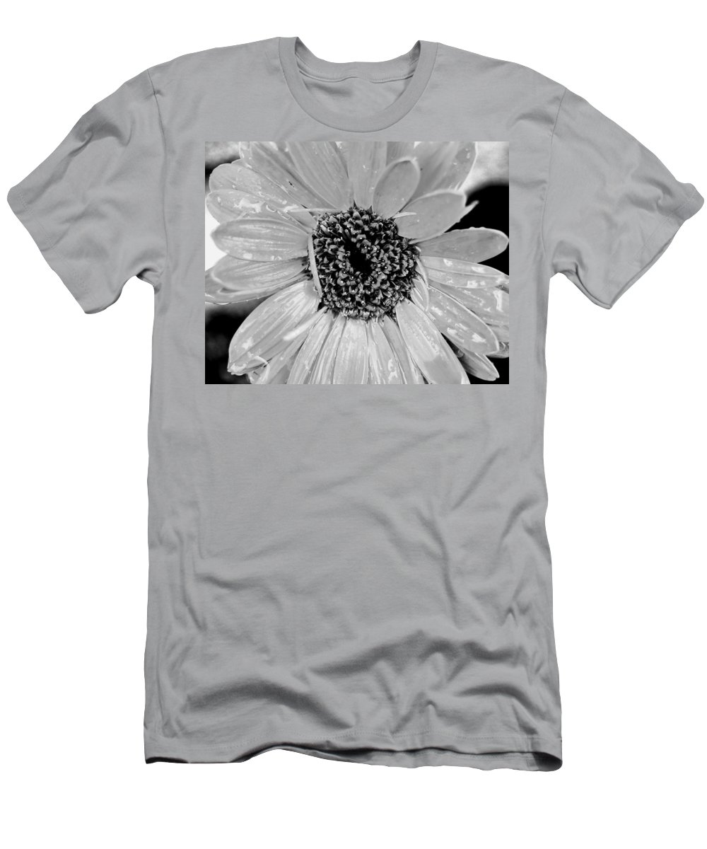 Gerber Daisy Men's T-Shirt (Athletic Fit) featuring the photograph Black And White Gerbera Daisy by Amy Fose