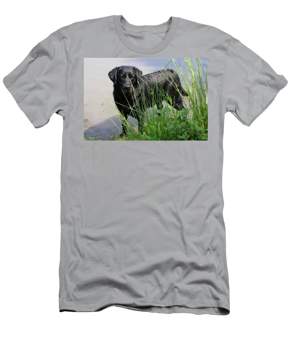 Dog Men's T-Shirt (Athletic Fit) featuring the photograph Chicago 0121 by Guy Whiteley