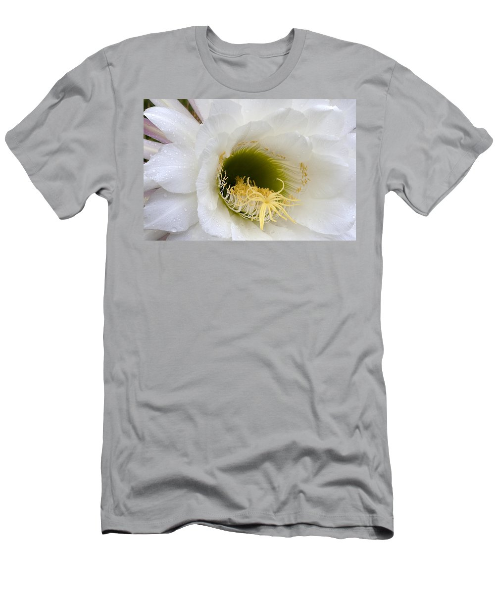 Flower Men's T-Shirt (Athletic Fit) featuring the photograph Easter Lily Cactus by Phyllis Denton