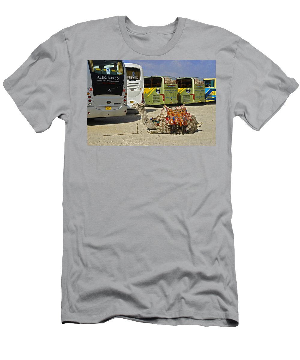 Humor Men's T-Shirt (Athletic Fit) featuring the photograph Egyptian Parking Lot by Michele Burgess