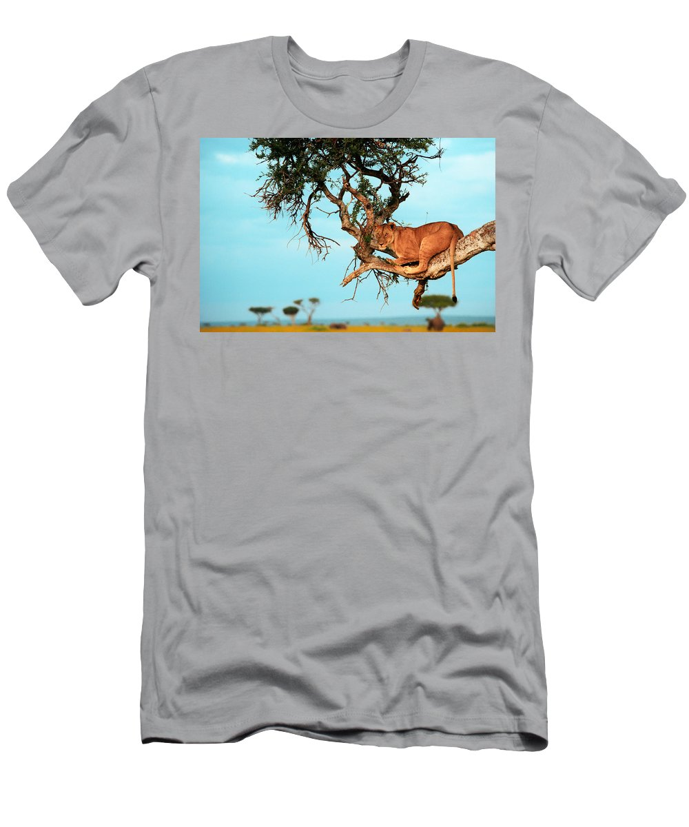 Africa Men's T-Shirt (Athletic Fit) featuring the photograph Lioness In Africa by Sebastian Musial