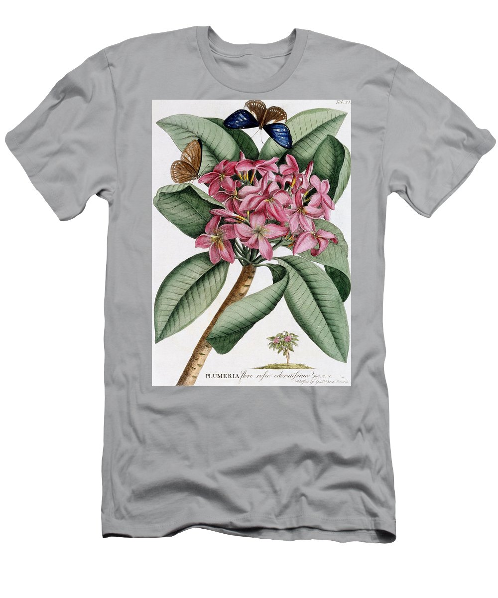 Text Men's T-Shirt (Athletic Fit) featuring the painting Plumeria by Georg Dionysius Ehret