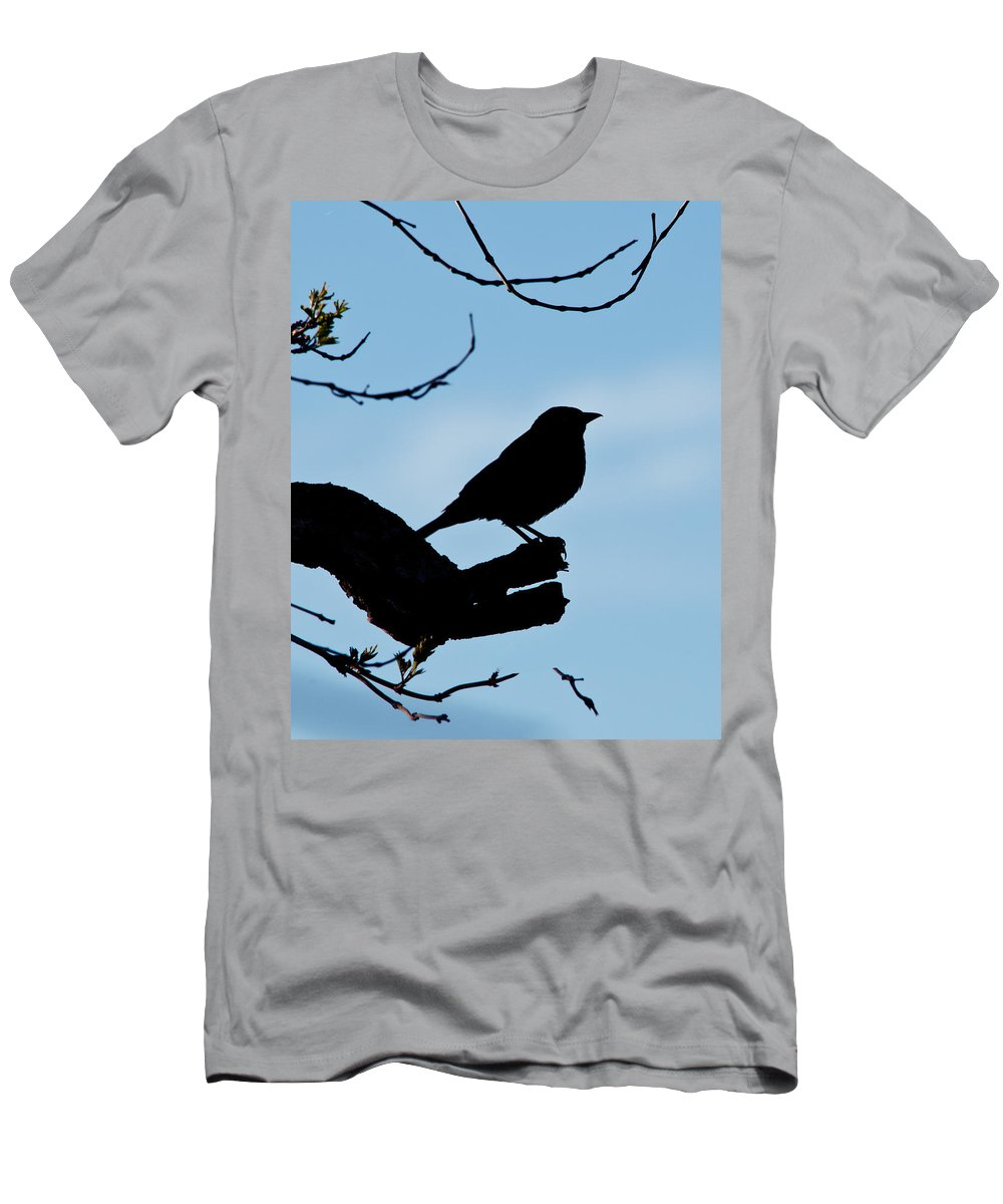 Bird Men's T-Shirt (Athletic Fit) featuring the photograph Standing Watch by Betty LaRue