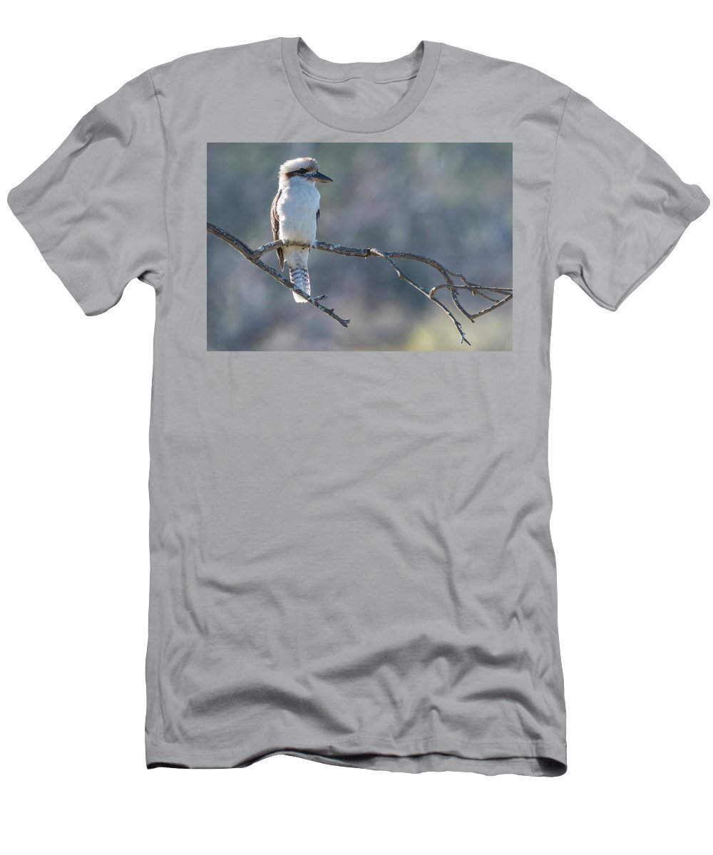 Animal Men's T-Shirt (Athletic Fit) featuring the photograph Kookaburra On A Branch by Merrillie Redden