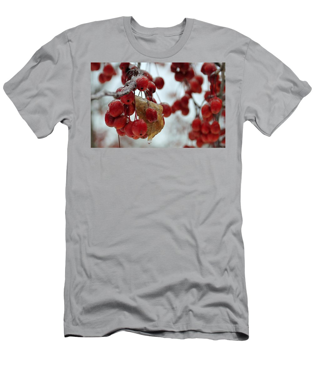 Winter Men's T-Shirt (Athletic Fit) featuring the photograph Winter Berries by David Arment