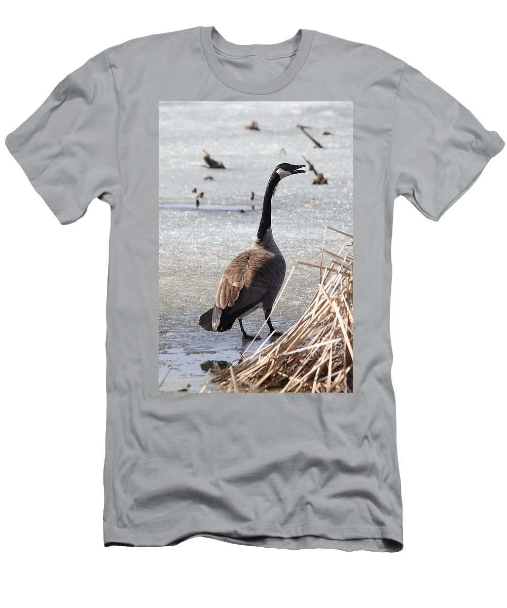 Goose Men's T-Shirt (Athletic Fit) featuring the photograph Goose by Lori Tordsen