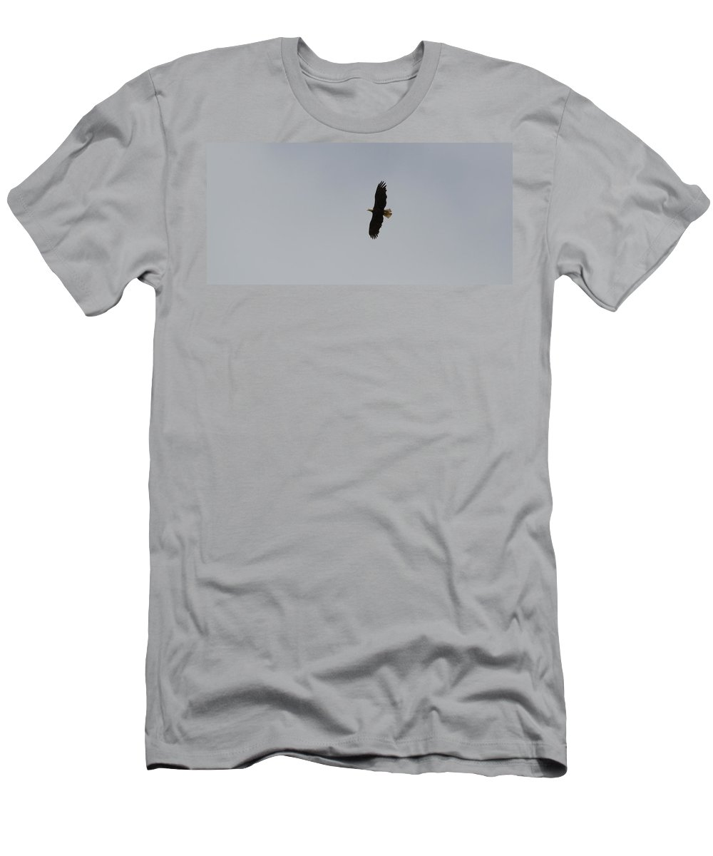 Washington Men's T-Shirt (Athletic Fit) featuring the photograph Wings Spread by Linda Kerkau