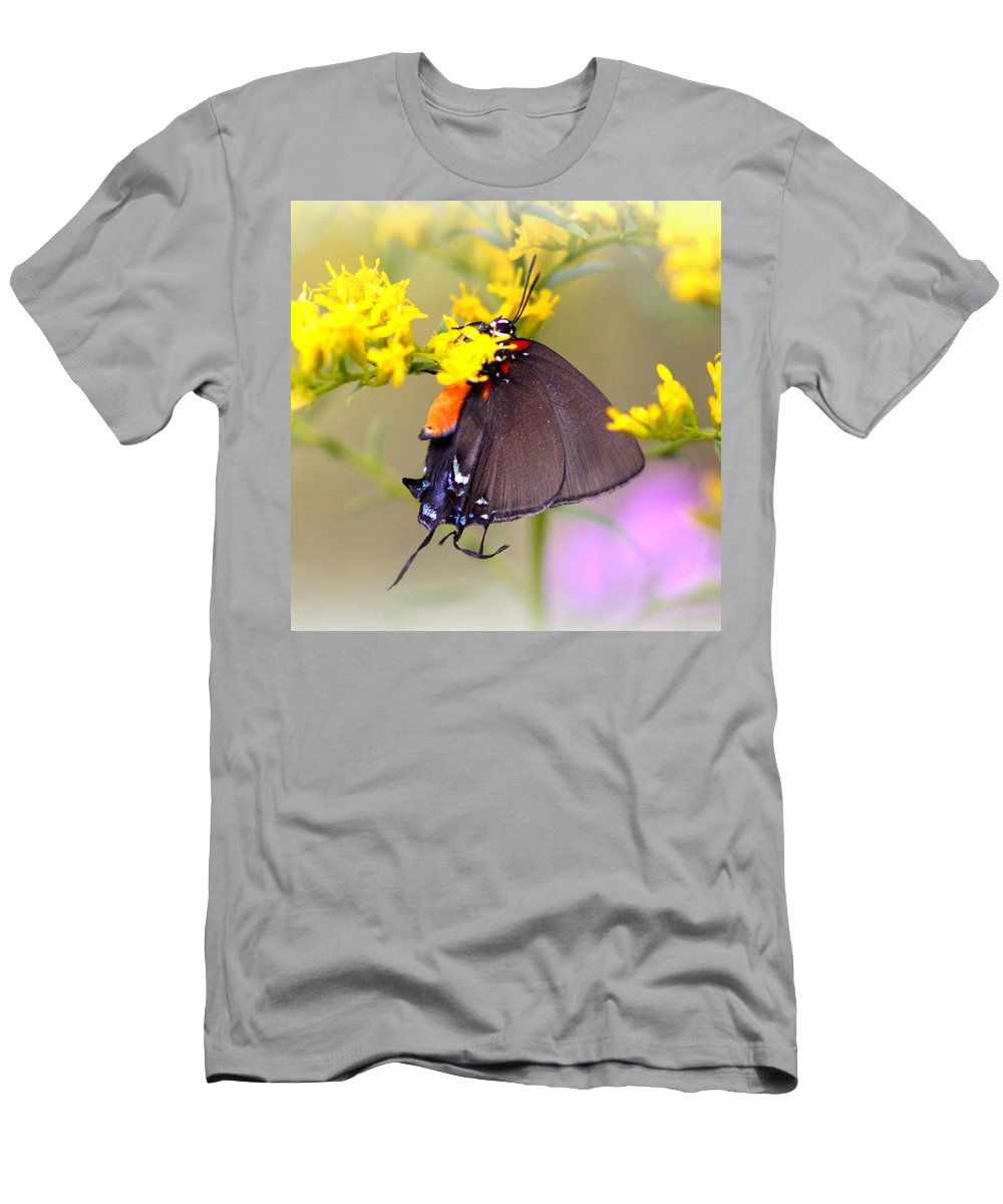 Butterfly Men's T-Shirt (Athletic Fit) featuring the photograph 3433 - Butterfly by Travis Truelove