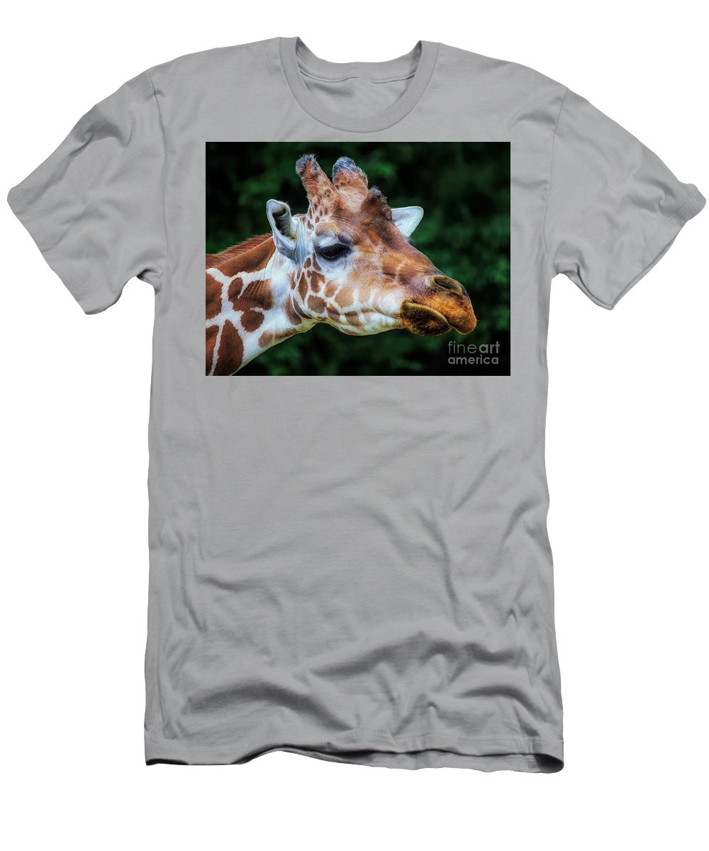 Giraffe Men's T-Shirt (Athletic Fit) featuring the photograph Giraffe by Paulette Thomas