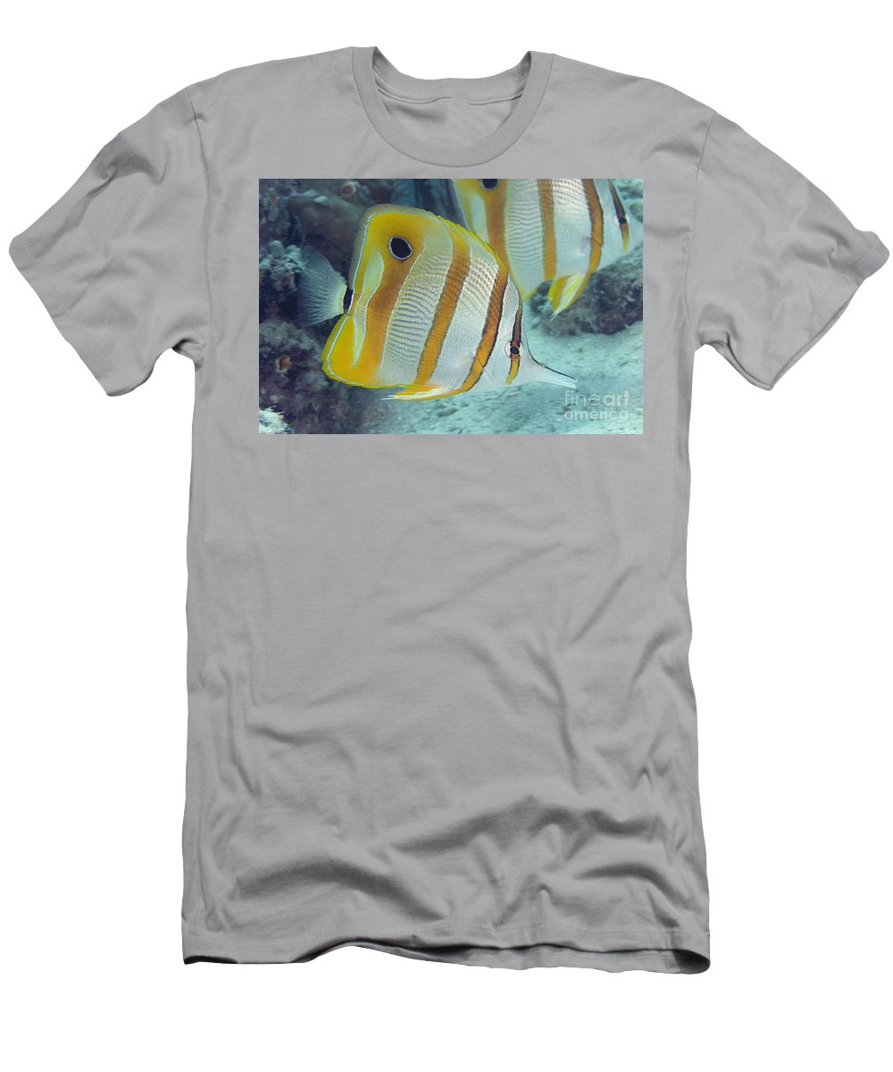 Animal Art Men's T-Shirt (Athletic Fit) featuring the photograph Malaysia Marine Life by Dave Fleetham - Printscapes