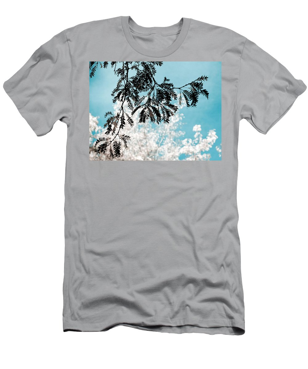 Tree T-Shirt featuring the photograph Abstract Locust by Marilyn Hunt