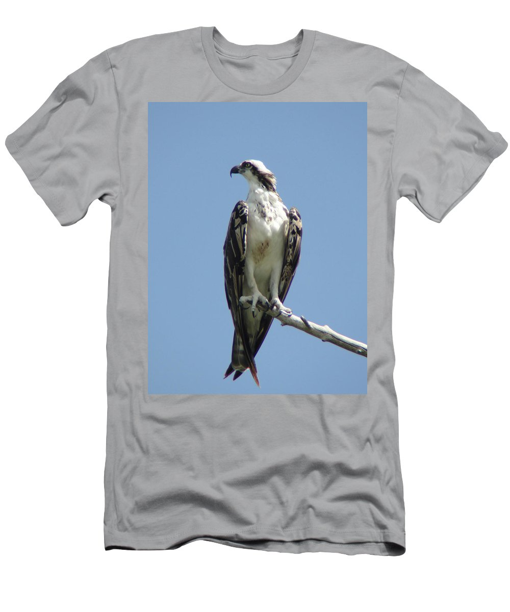 Sky Men's T-Shirt (Athletic Fit) featuring the photograph Alert by Cathi Abbiss Crane