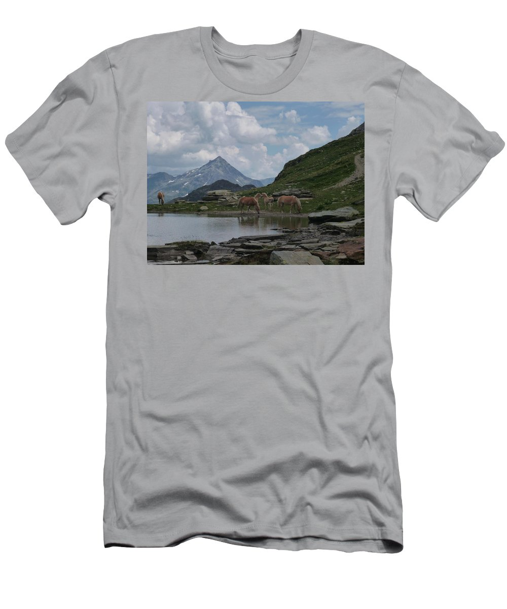 Alpes Men's T-Shirt (Athletic Fit) featuring the photograph Alps' Horses by Laura Greco