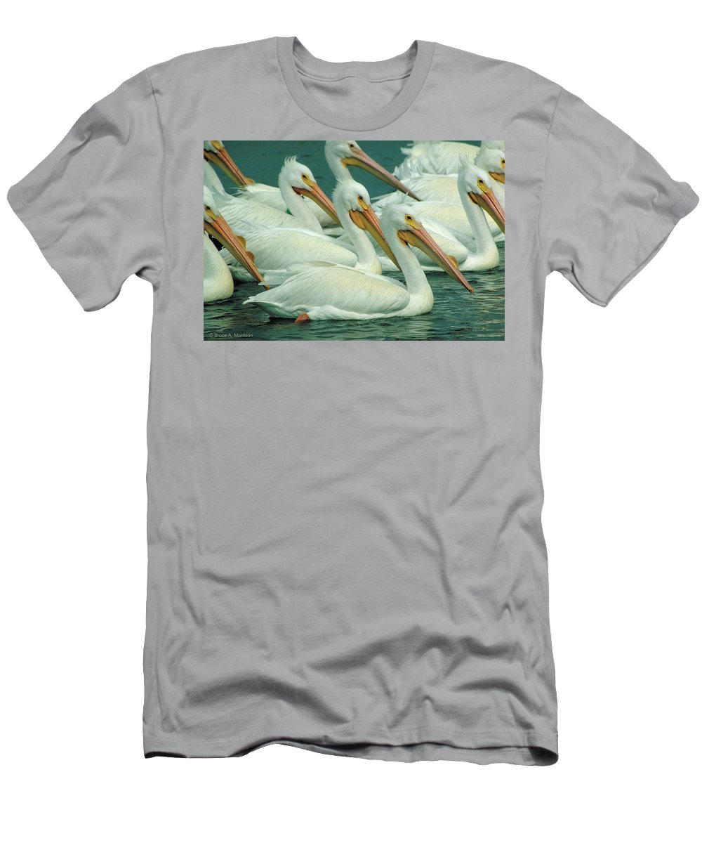 White Pelicans Men's T-Shirt (Athletic Fit) featuring the photograph American White Pelicans by Bruce Morrison