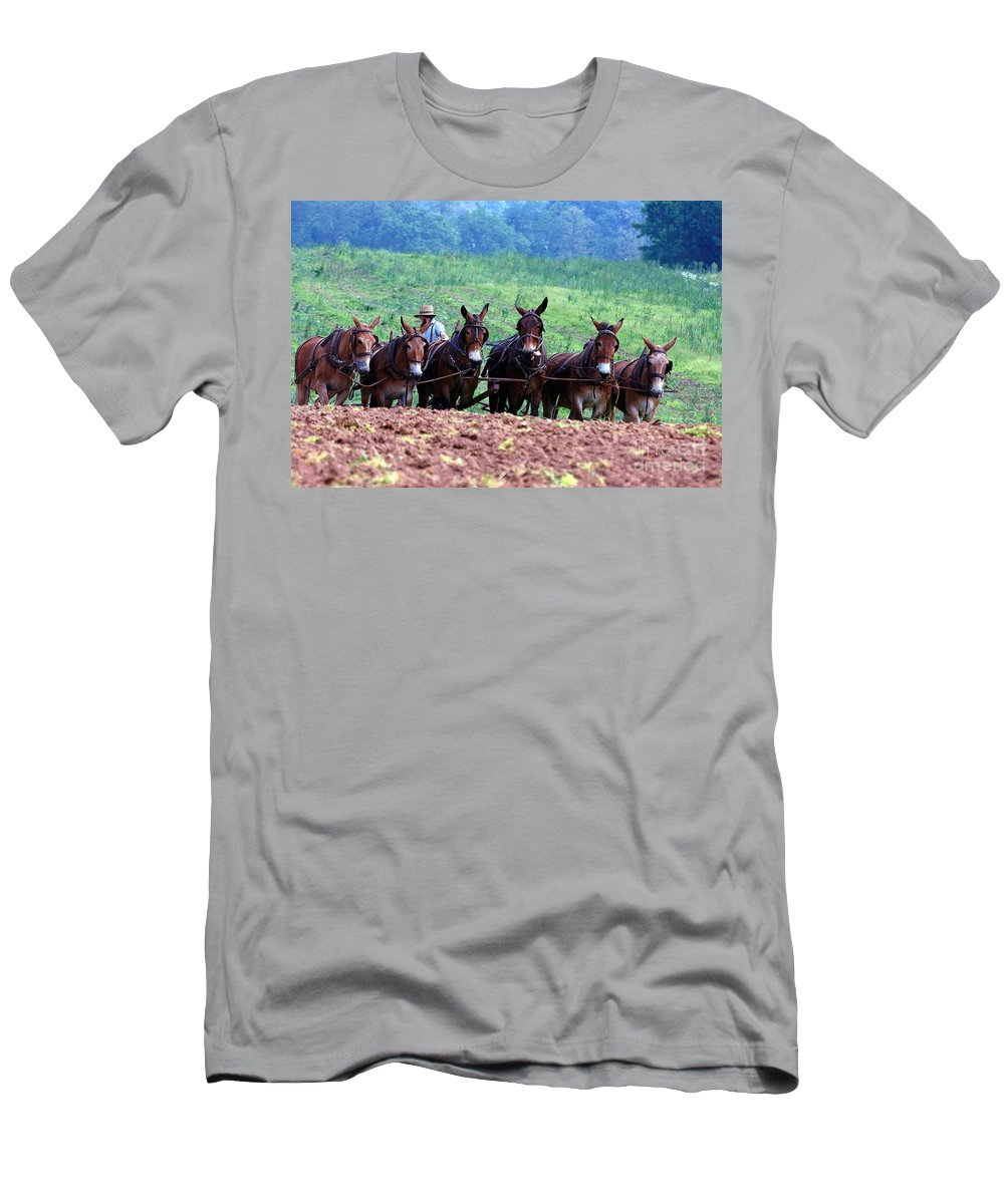 Amish Men's T-Shirt (Athletic Fit) featuring the photograph Amish Plowing The Fields With Mules by Randy Matthews