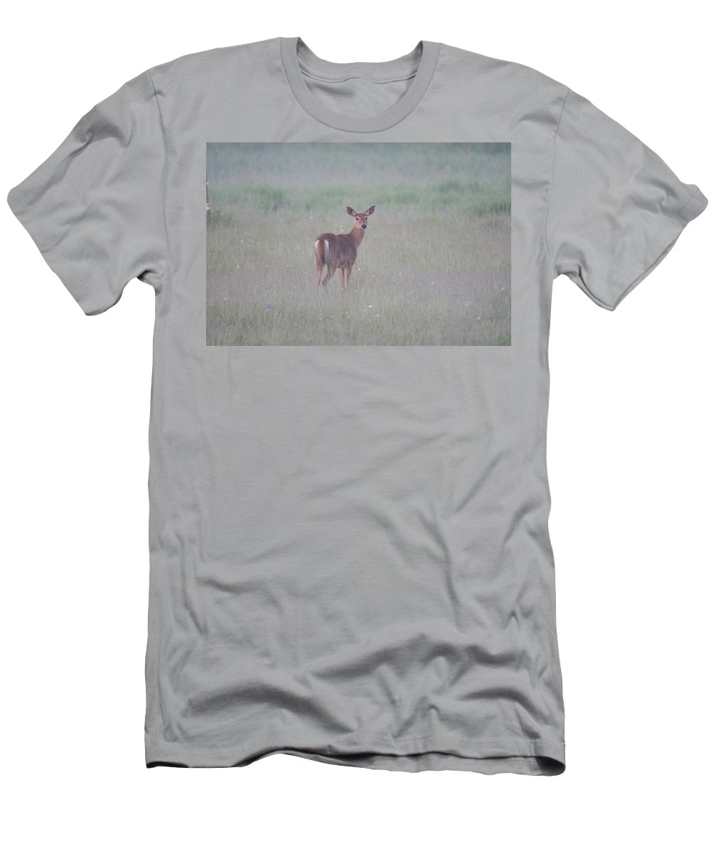 Deer T-Shirt featuring the photograph An Early Summer Morning by Michael Peychich