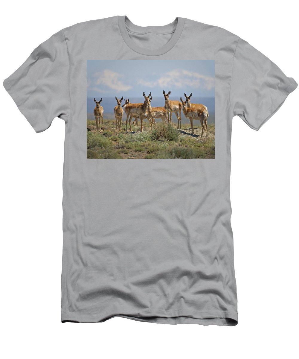 Antelope Men's T-Shirt (Athletic Fit) featuring the photograph Antelope by Heather Coen