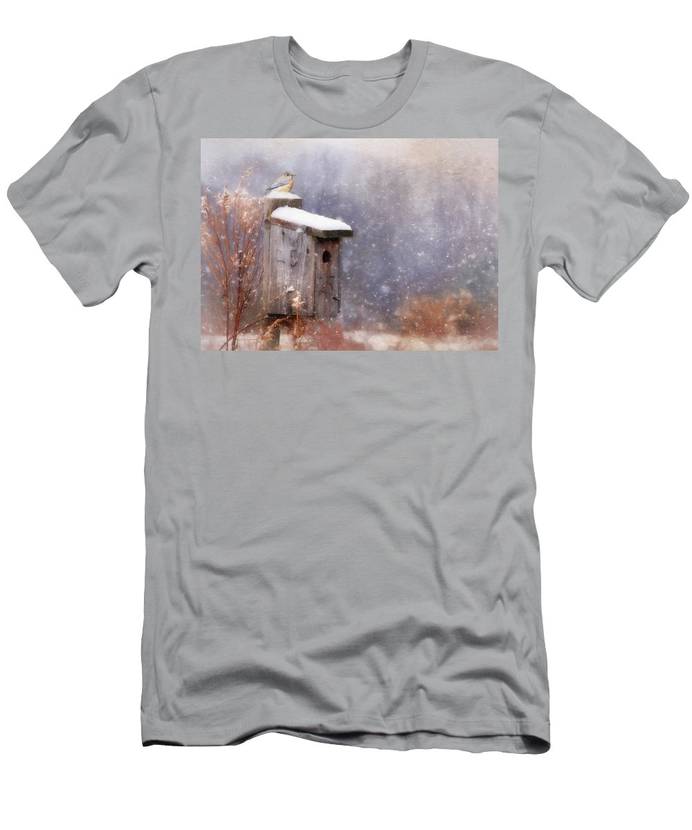 Bird Men's T-Shirt (Athletic Fit) featuring the photograph Apartment 25 by Lori Deiter