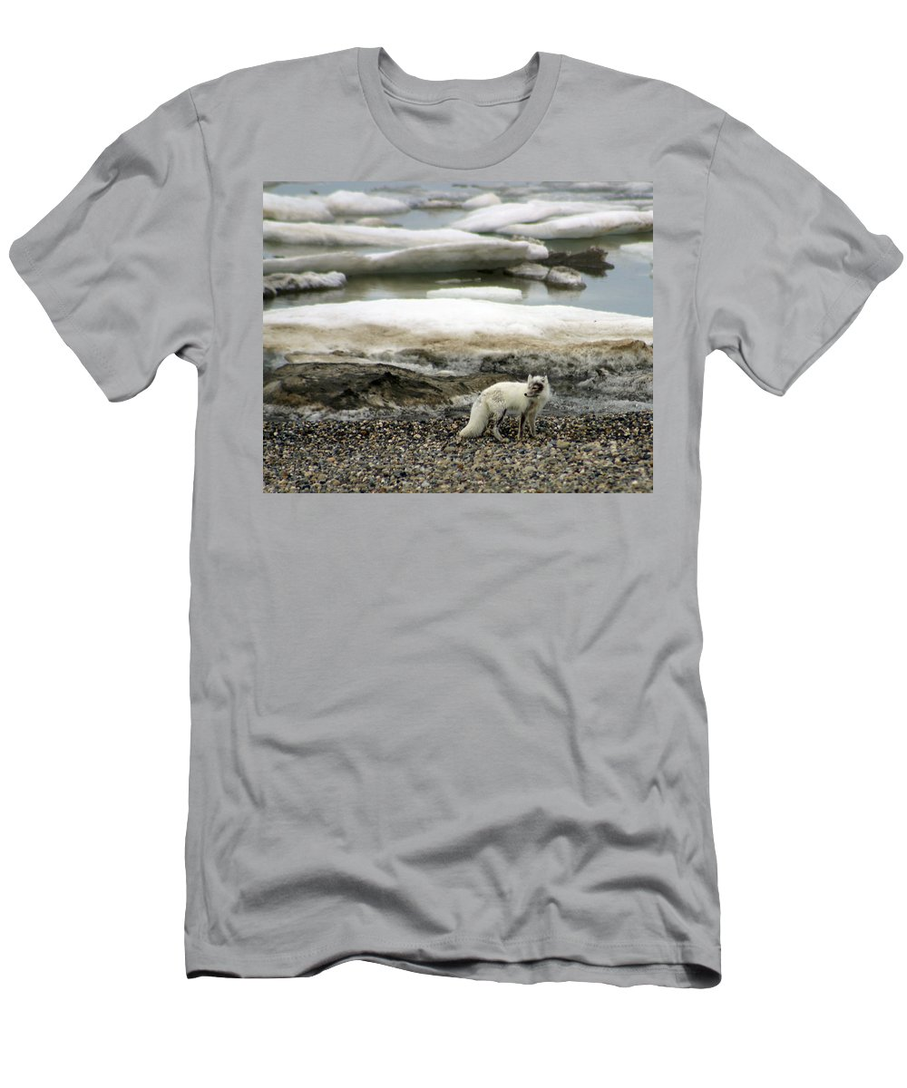 Fox Men's T-Shirt (Athletic Fit) featuring the photograph Arctic Fox By Frozen Ocean by Anthony Jones