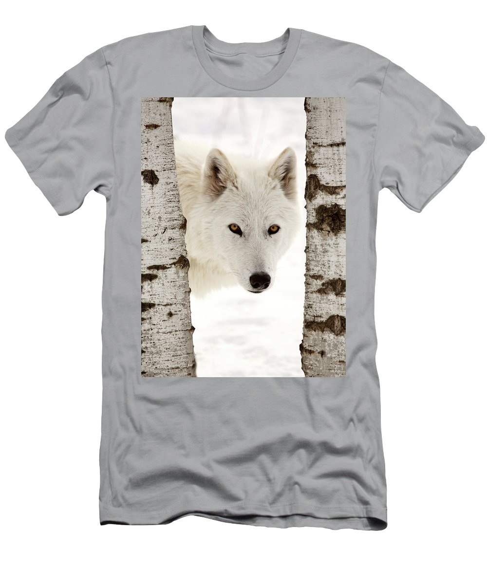 Arctic Wolf Men's T-Shirt (Athletic Fit) featuring the digital art Arctic Wolf Seen Between Two Trees In Winter by Mark Duffy