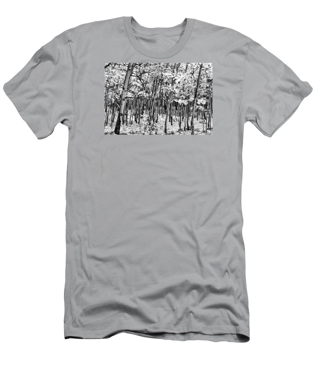Aspen In Snow B&w Men's T-Shirt (Athletic Fit) featuring the photograph Aspen In Snow Black And White by Wes and Dotty Weber