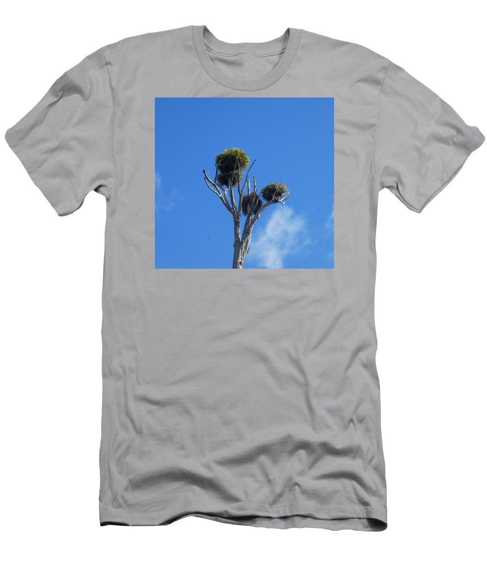 Looking Up Men's T-Shirt (Athletic Fit) featuring the photograph Bark by Marisa McFarlane