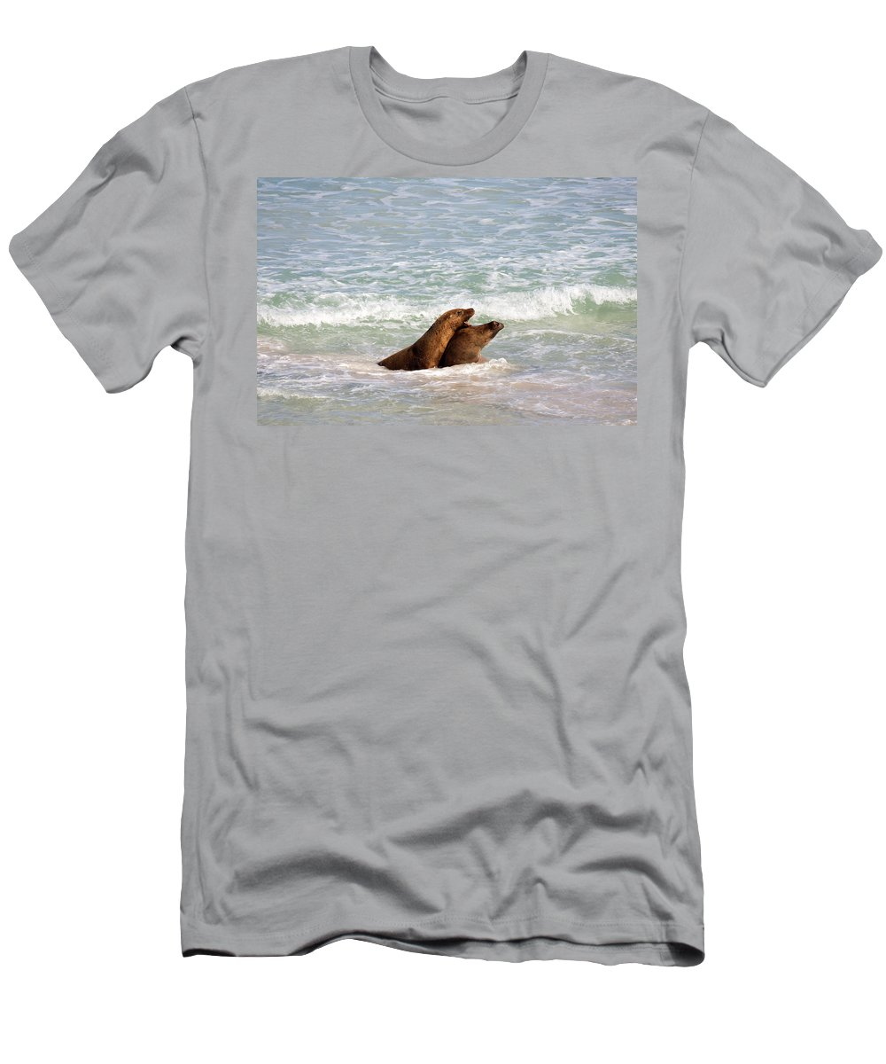 Sea Lion Men's T-Shirt (Athletic Fit) featuring the photograph Battle For The Beach by Mike Dawson