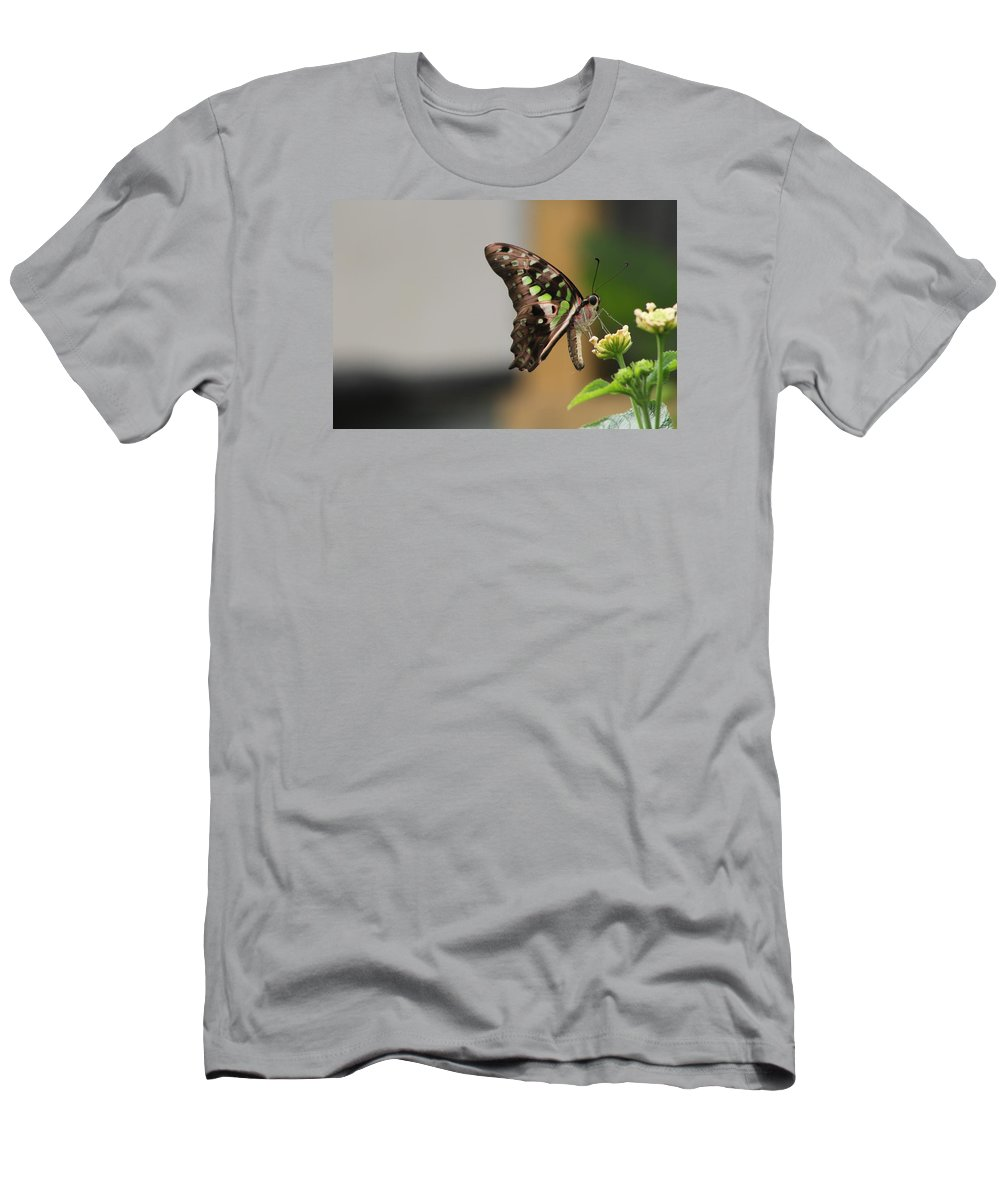 Butterfly Men's T-Shirt (Athletic Fit) featuring the photograph Beautiful Butterfly by Kyle Hillman