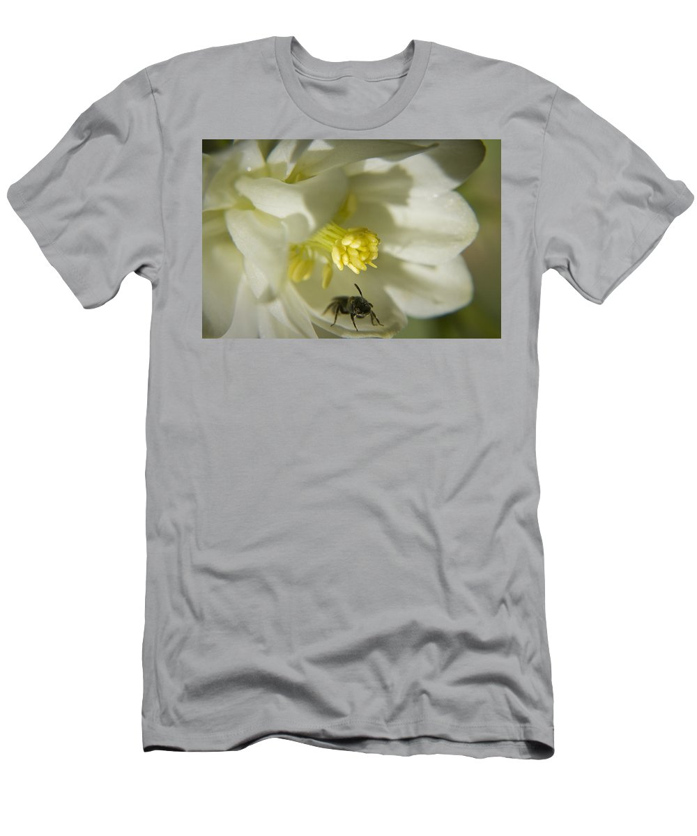 Columbine Men's T-Shirt (Athletic Fit) featuring the photograph Bee Mine by Teresa Mucha