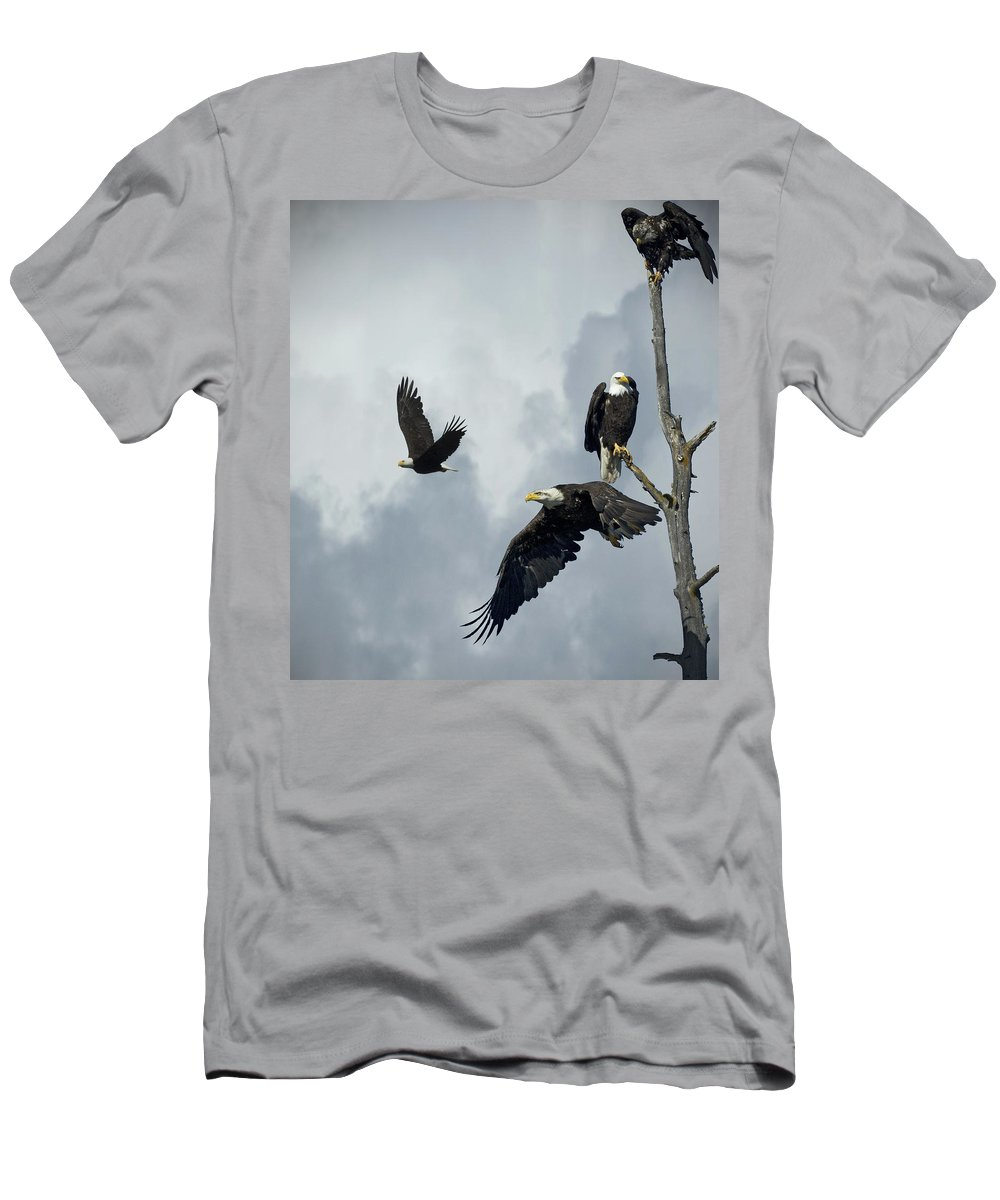 Bald Eagle Men's T-Shirt (Athletic Fit) featuring the photograph Before The Storm by Rob Mclean