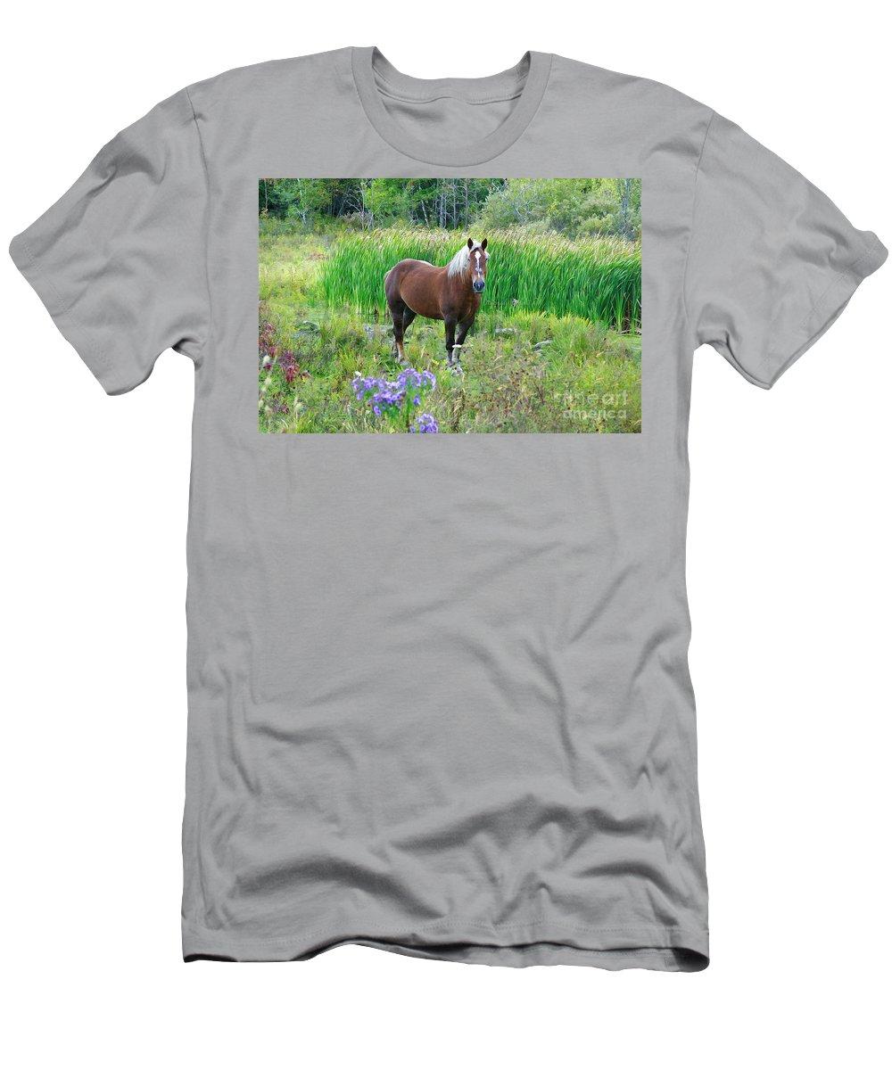 Belgian T-Shirt featuring the photograph Belgian In Flowers by Deborah Benoit