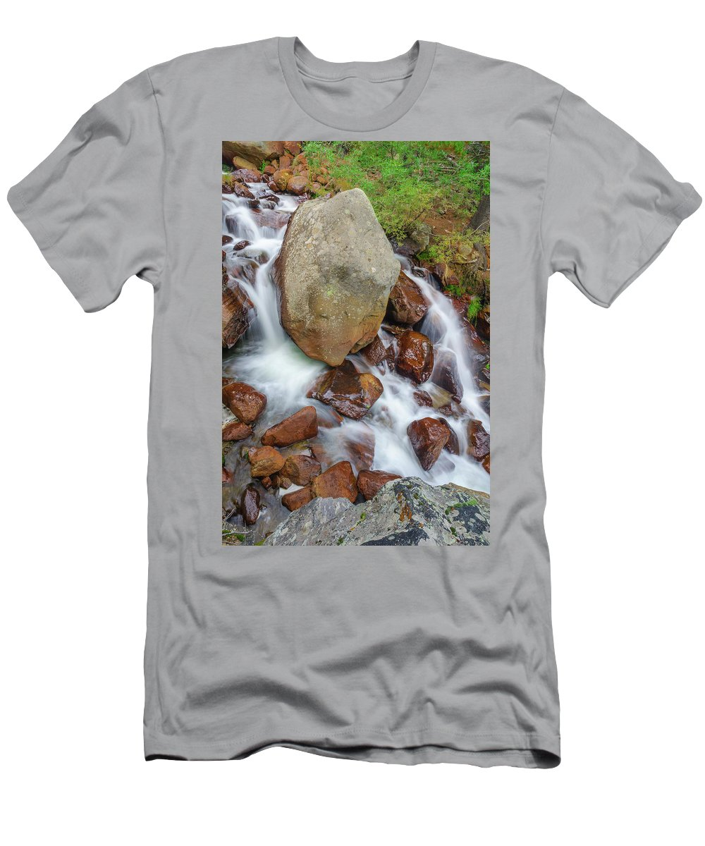Silver Creek Men's T-Shirt (Athletic Fit) featuring the photograph Benzai-ten, The Japanese Goddess Of Water, Music, Wisdom, And The Arts by Bijan Pirnia