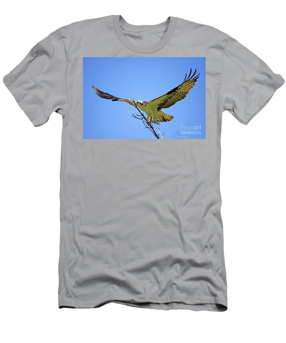 Osprey Men's T-Shirt (Athletic Fit) featuring the photograph Bigger Then Me by Deborah Benoit