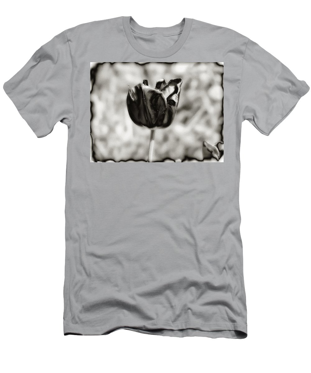 Flower T-Shirt featuring the photograph Black Tulip by Bill Cannon
