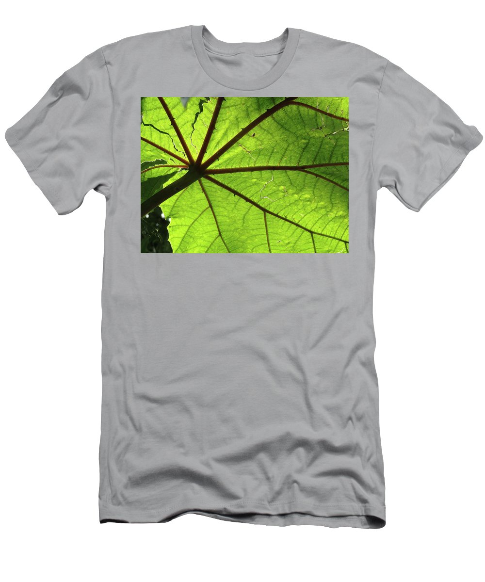 Leaves Men's T-Shirt (Athletic Fit) featuring the photograph Blood Red Feeder by Trish Hale