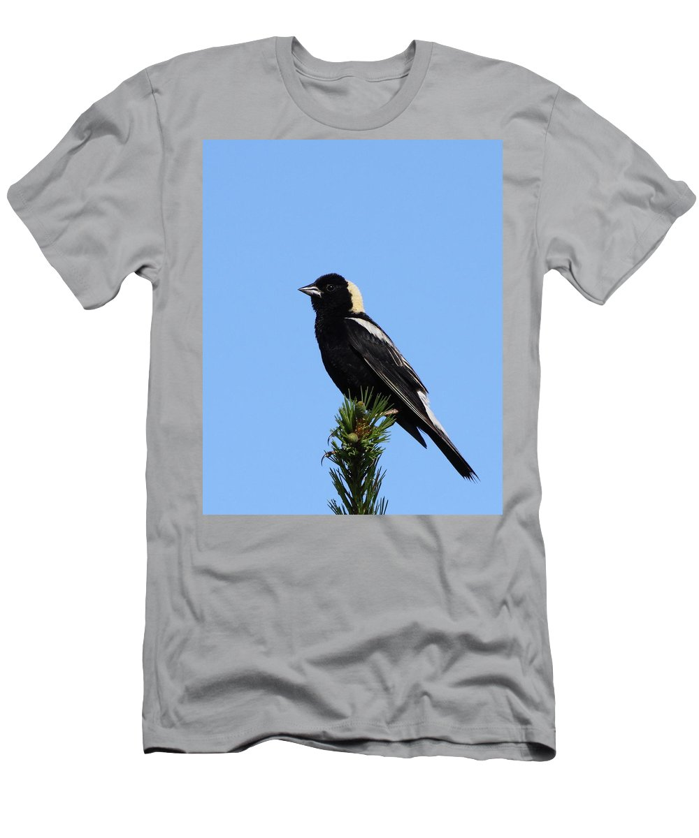 Bobolink Men's T-Shirt (Athletic Fit) featuring the photograph Bobolink by Bruce J Robinson