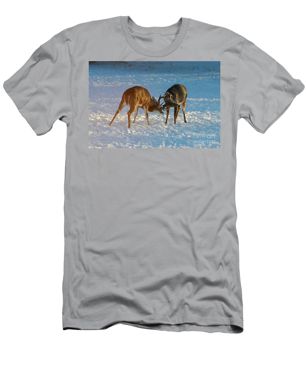 White Tailed Deer Men's T-Shirt (Athletic Fit) featuring the photograph Boys Will Be Boys by Sandra Updyke