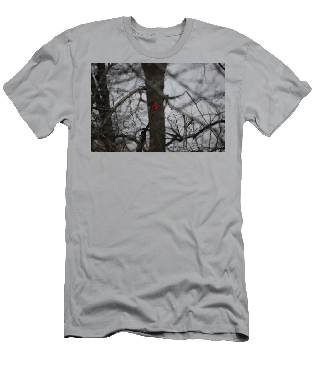 Digita Photo Men's T-Shirt (Athletic Fit) featuring the digital art bRIGHT SPOT ON A CLOUDY DAY by David Lane