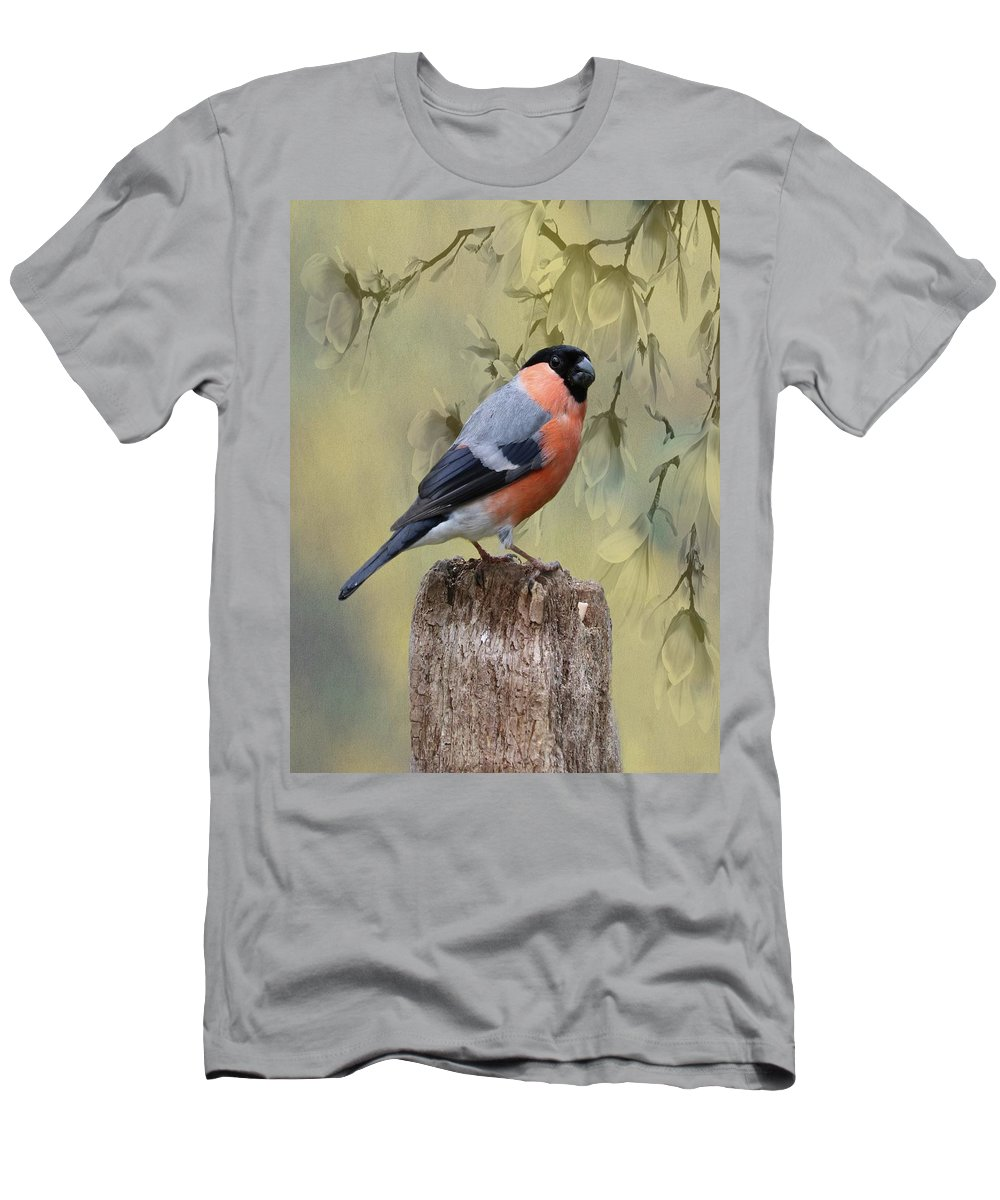 Bullfinch Men's T-Shirt (Athletic Fit) featuring the photograph Bullfinch Bird by Movie Poster Prints