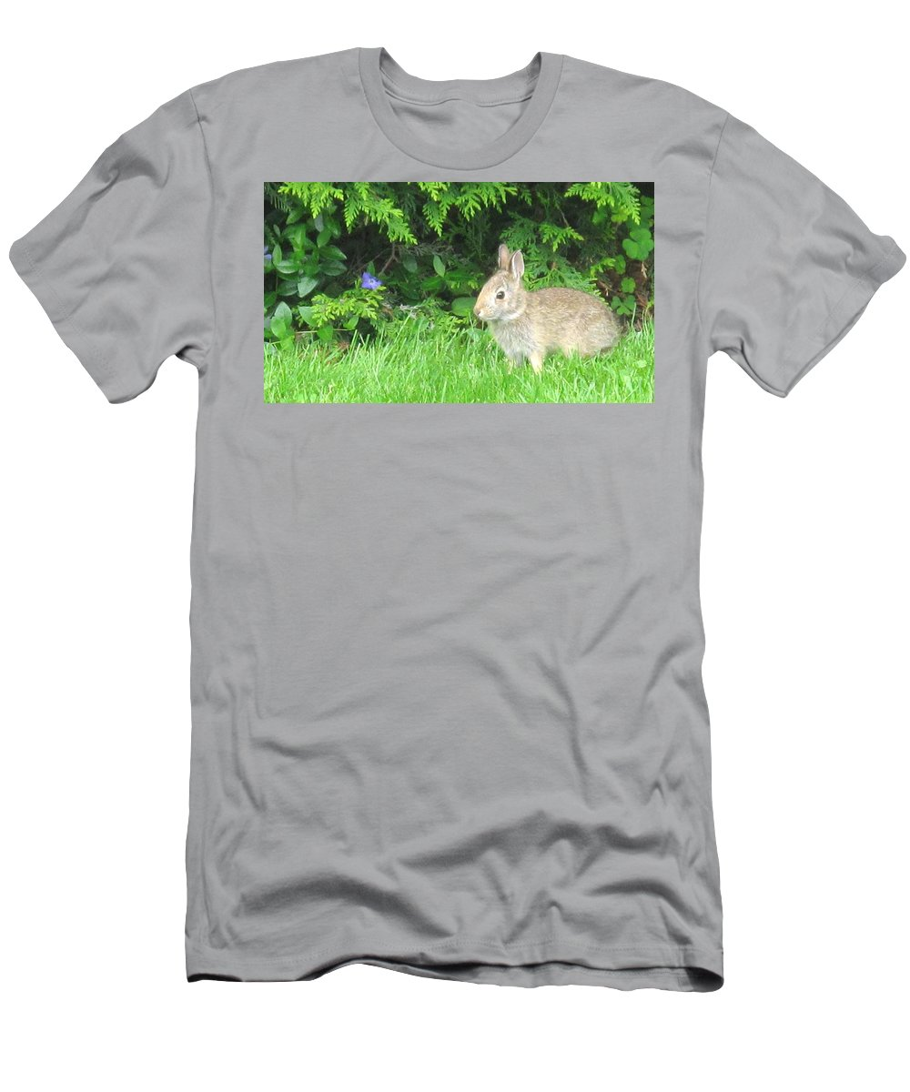 Rabbit Men's T-Shirt (Athletic Fit) featuring the photograph Bunny In Repose by Ian MacDonald