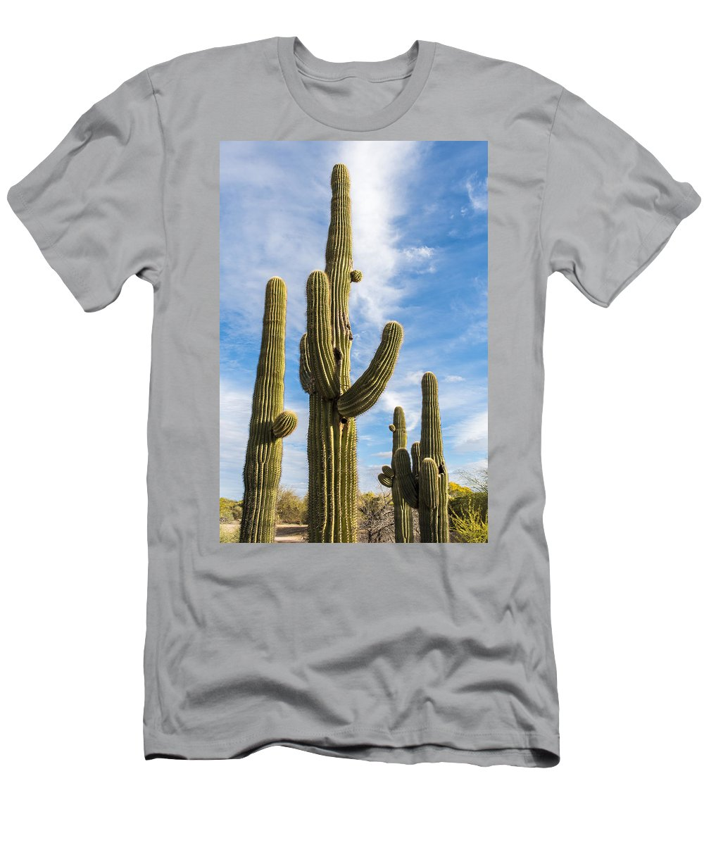 Desert Cactus Men's T-Shirt (Athletic Fit) featuring the photograph Cactus Arms by Jon Berghoff