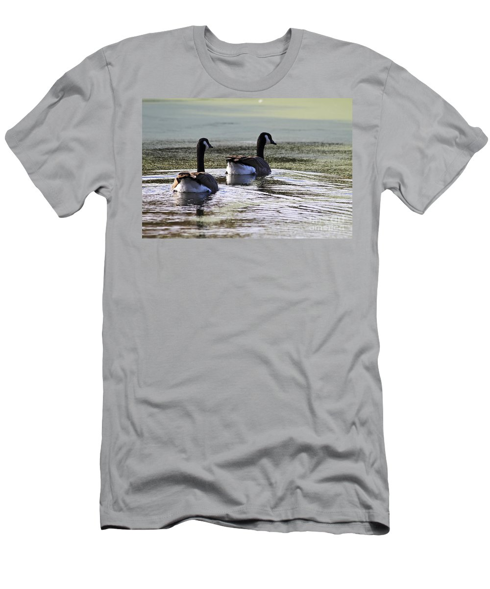 Animal Men's T-Shirt (Athletic Fit) featuring the photograph Canada Geese by Teresa Zieba
