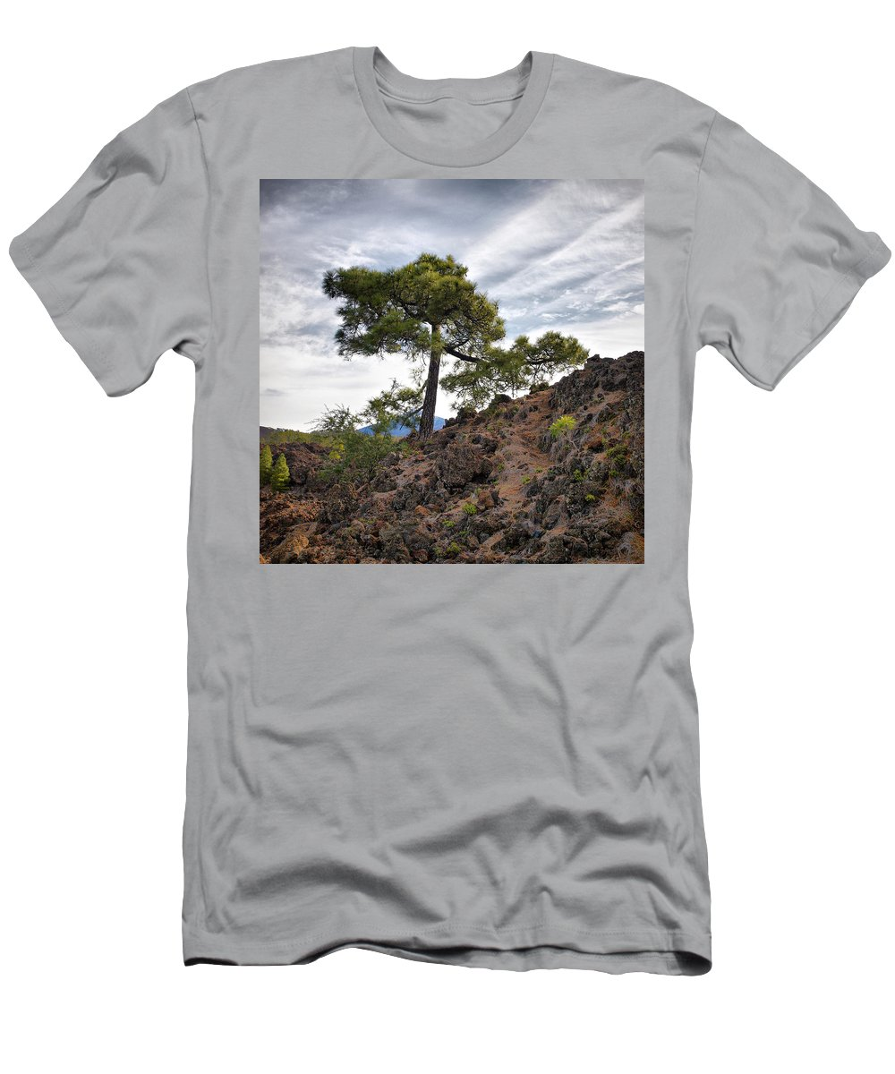Landscape Men's T-Shirt (Athletic Fit) featuring the photograph Canary Pines Nr1 by Jouko Lehto